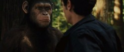 Geneza planety ma³p / Rise of the Planet of The Apes (2011) BDRip.XVID.AC3.HQ.Hive-CM8 / NAPiSY PL