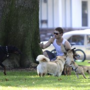 Kellan Lutz walking his dogs July 23rd 52211689844352
