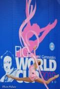 WC Pesaro 2010 - Page 4 98ba8495544420